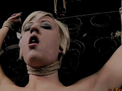 With so many members bringing their twisted ideas to the table there is always one more surprise coming when Lila comes to RealTimeBondage.