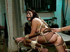 Coral aorta is a breasty brunette hair milf who enjoys being aroused while she is tied up in bondage devices. She loves having her throat gagged with a ball as her beautiful domina takes advantage of her position. The hot blonde milf Lorelei Lee loves satisfying her sex slave with a transparent butt plug.