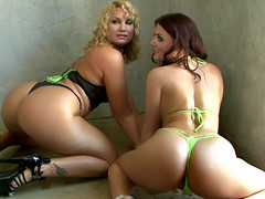 2 lustful women bending for the purpose of a recent photoshoot